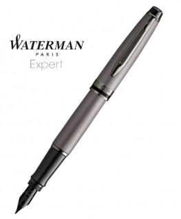 Stylo Plume Waterman Expert Metallic Silver RT